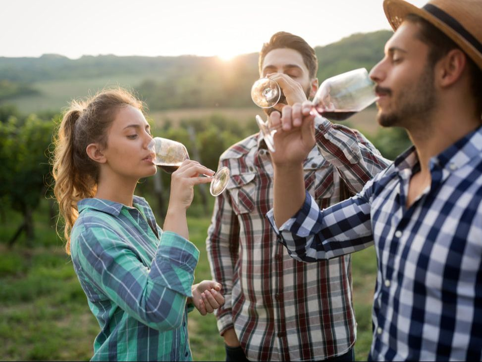 Group of friends drinking red wine